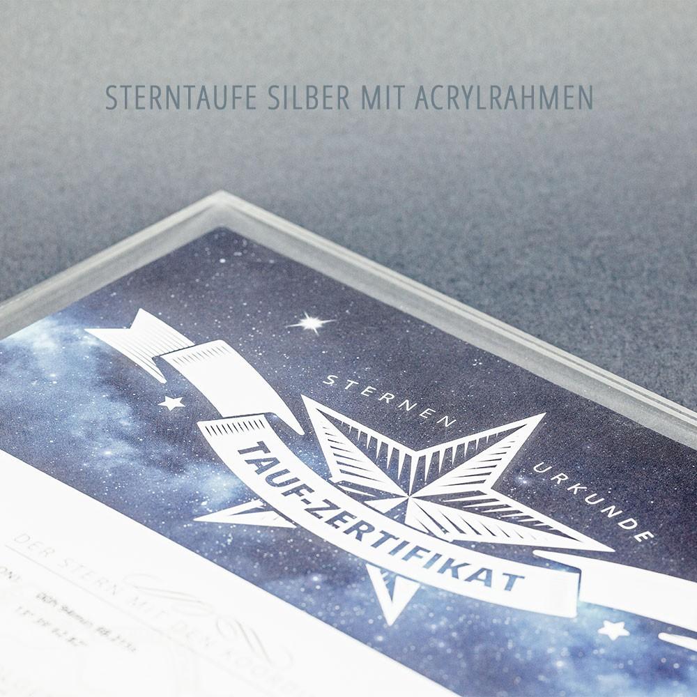 Es besteht aus dem Abbild eines Wappenadlers mit einem Schild auf Stern